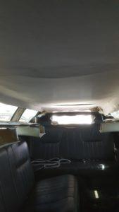 limo-tetokarpitozas-8